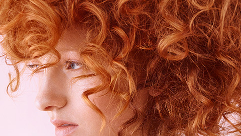 all-over-color-merida